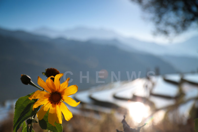 Sunrise HuangCaoLing