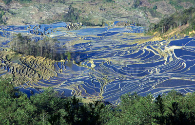 Terraced rice fields, AiChun village