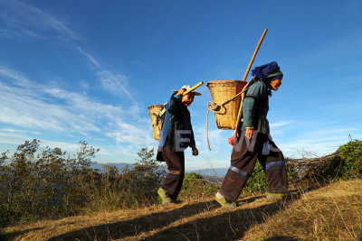 Farmers returning