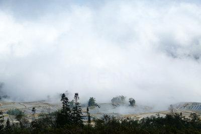 Qingkou village