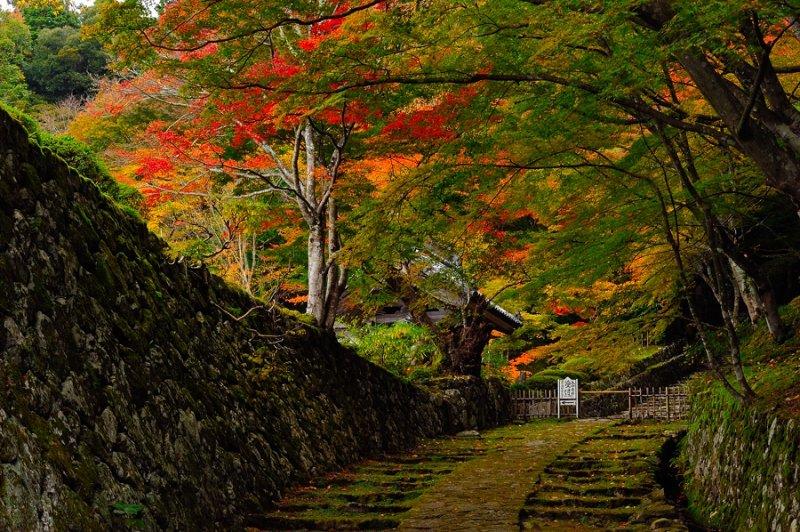 Hyakusai-ji Temple at Shiga
