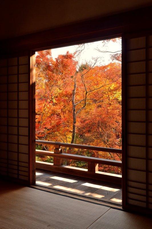 Hokyo-in Temple at Kyoto