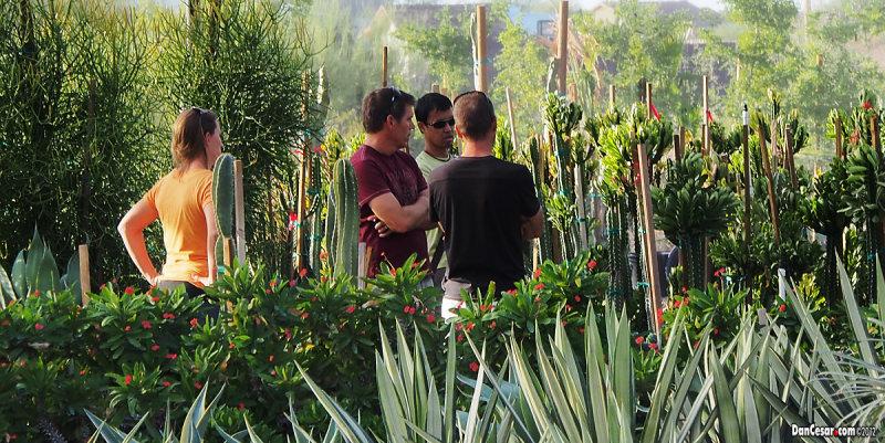 Joe, Cesar & Brian checking desert nursery