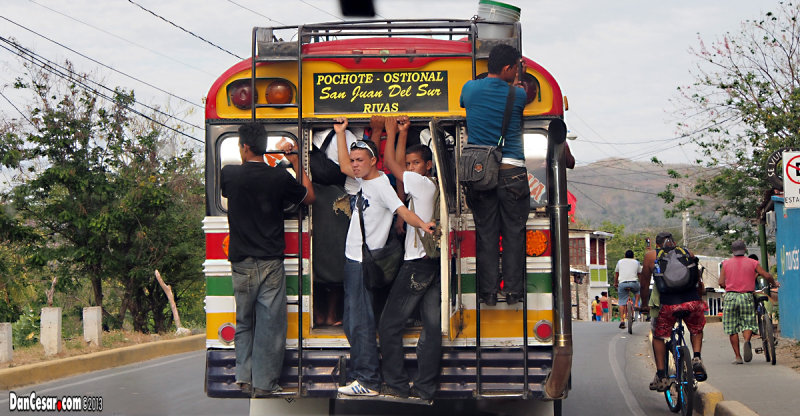 Last Bus to Ostional