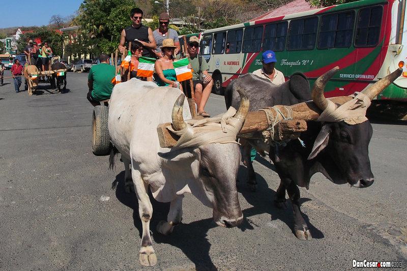 St. Patricks Day Ox Cart Pub Crawl