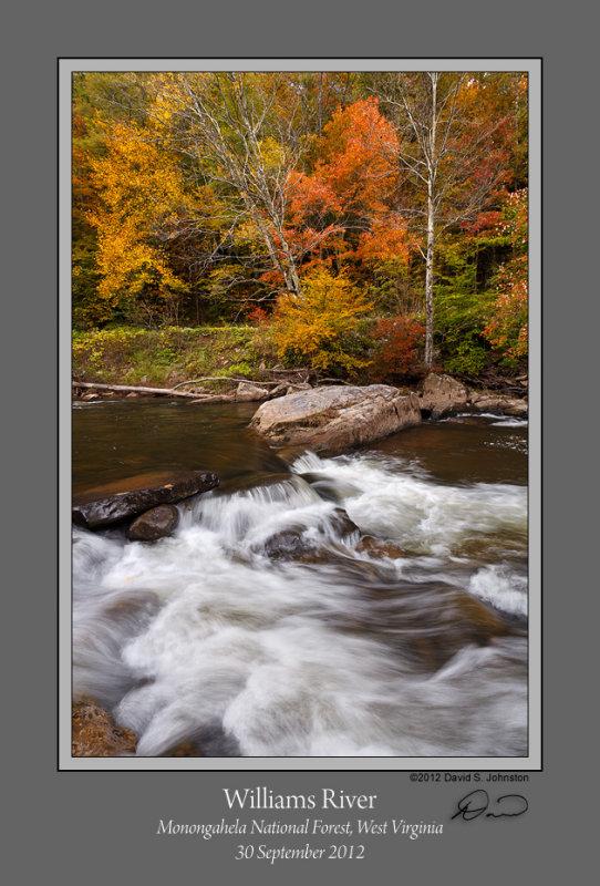 Williams River Autumn 3.jpg