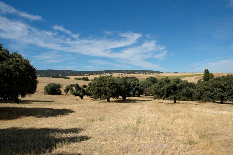 La Mogea and La Gasca