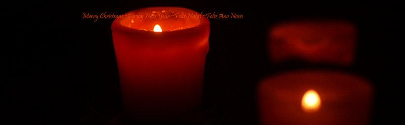 Best Wishes ♡