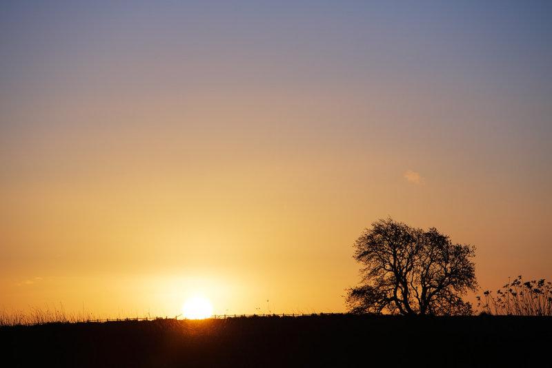 20121123 - Sun