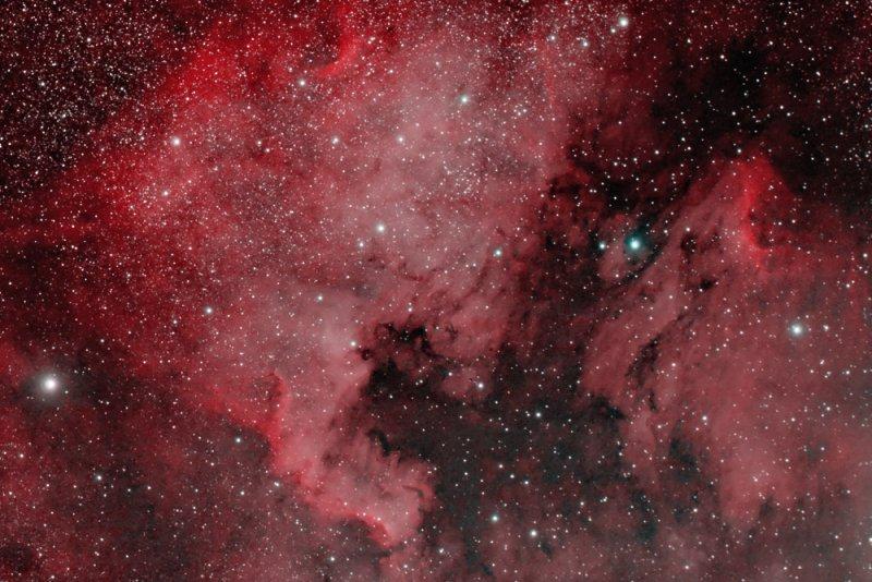 North America Nebula ( NGC7000) + Pelican Nebula (  IC5070/IC5067) in Cygnus
