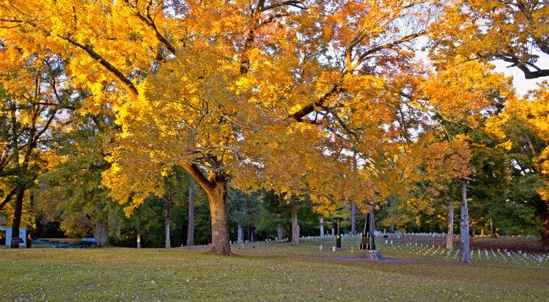 Autumn in Shiloh