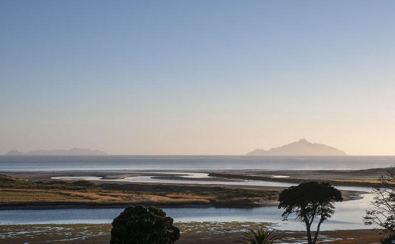 Waipu River Estuary at low tide at dawn