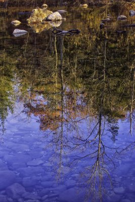 November Reflection at Buffalo National River