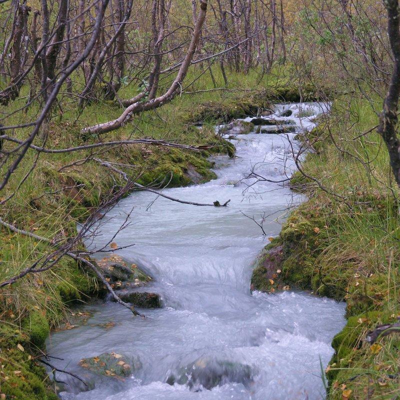 Glacier creek.jpg