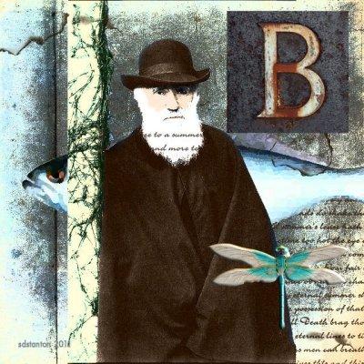 Darwins Art.jpg