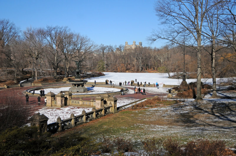 Bethesda Fountain & Frozen Lake