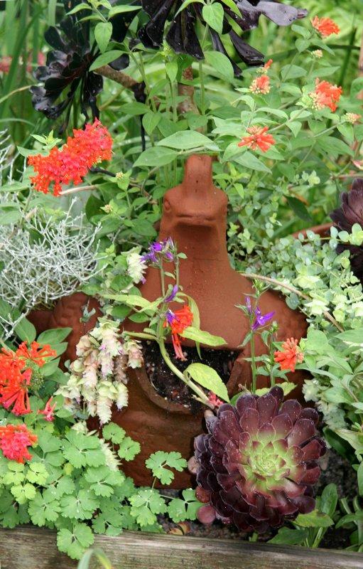 Terracotta Hen in a Garden Plot