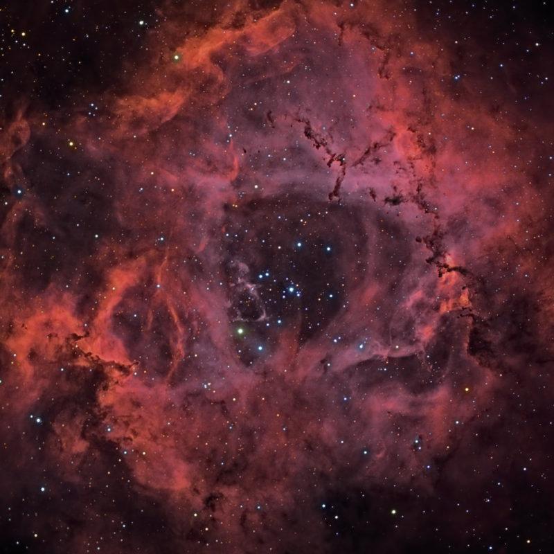 The Rosette Nebula - Hybrid Image OS Riccardi-Honders + Boren-Simon Powernewt