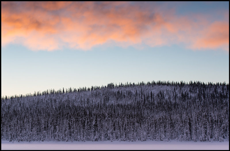 Small mountain with forest south of Svappavaara - Lapland