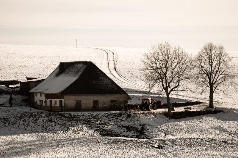 Black Forest Farm House