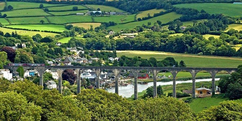 Calstock viaduct, from Cotehele, Cornwall