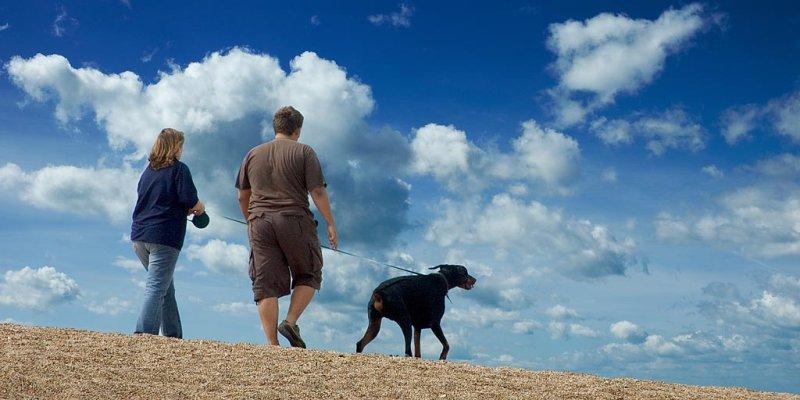 Walking the dog, near Hive beach