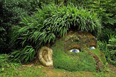 Giants head of plants, Lost Gardens of Heligan