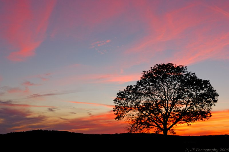 _JFF5130 Sunset copy.jpg