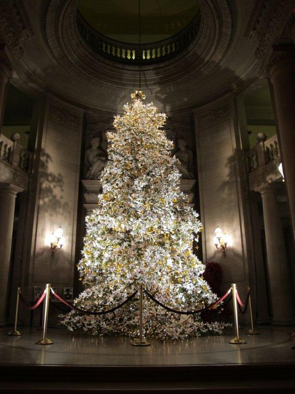 San Francisco City Hall Christmas Tree
