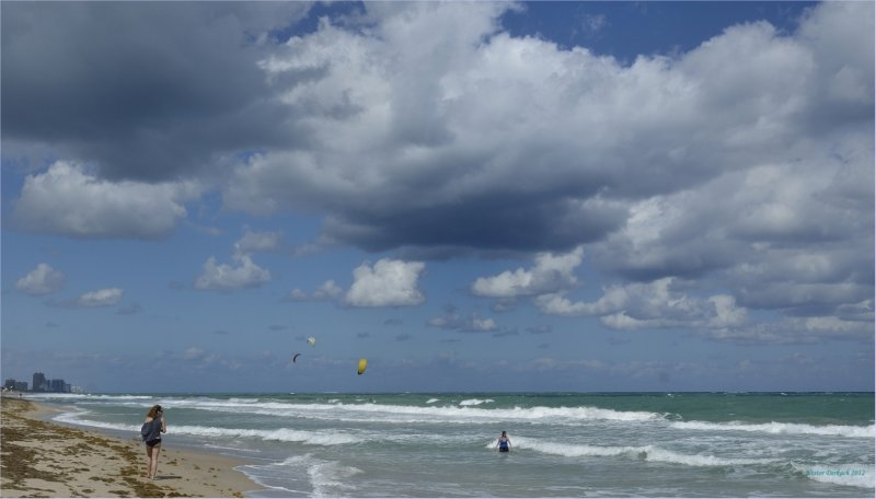 Fort Lauderdale  Florida  shore line stroll