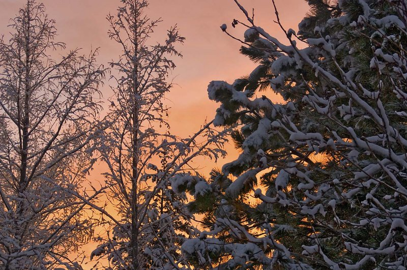 Sunset after day-long wet snow