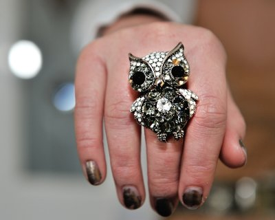 A wise owl on young fingers