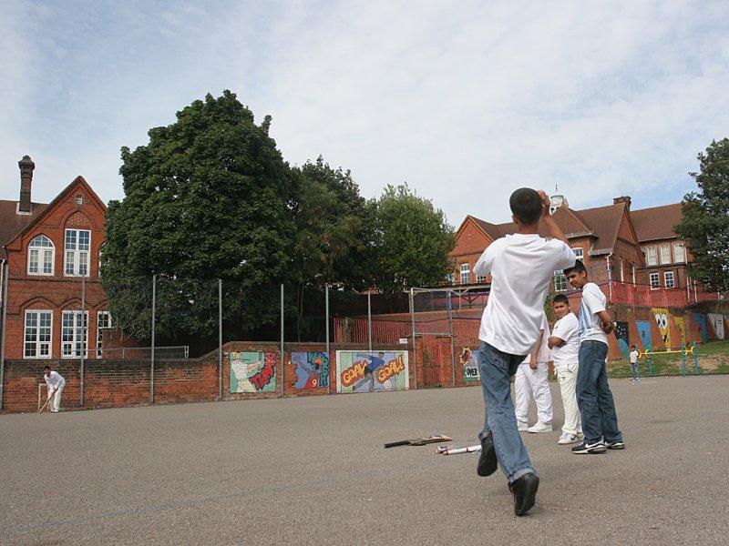 Cricket 20060825 IMG_90370.jpg