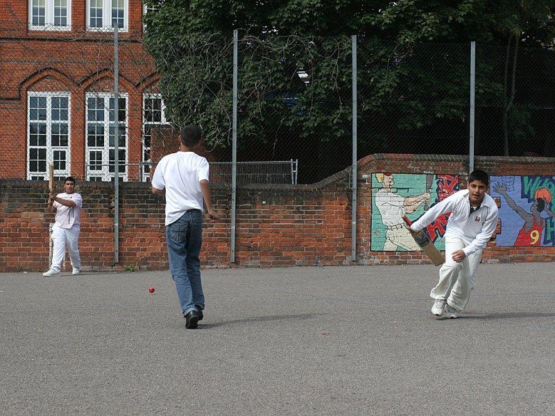 Cricket 20060825 IMG_90376.jpg