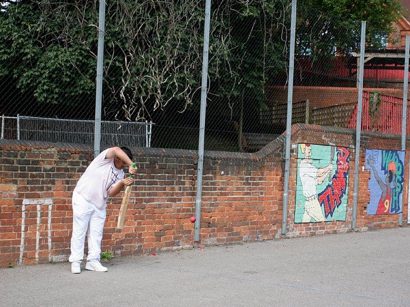 Cricket 20060825 IMG_90380.jpg
