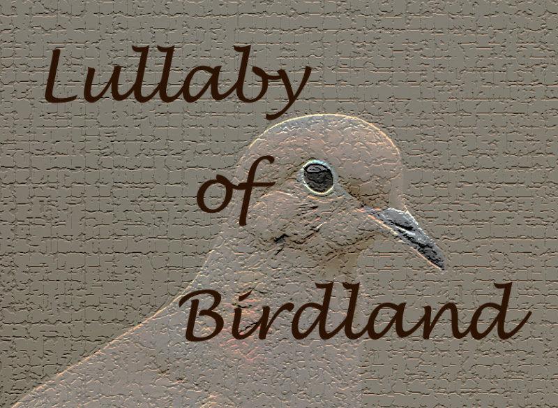 <b>Lullaby of Birdland Video</b>