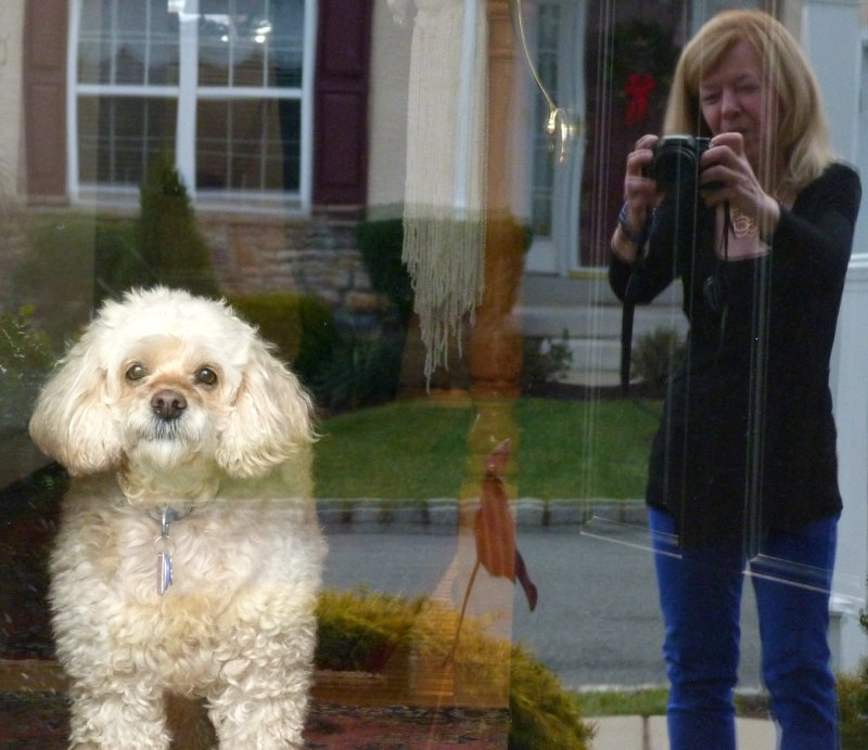 Sue and LuLu Christmas 2012.jpg