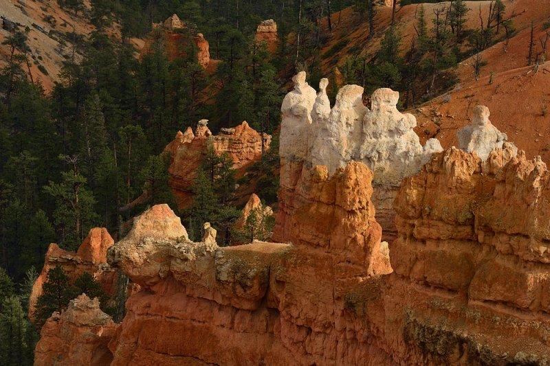 guardians of the canyon...