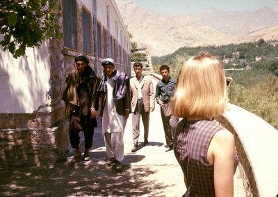 Blonde & Afghans