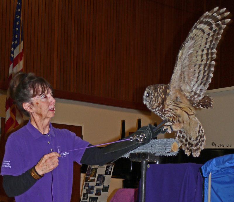 Native Bird Connections Educational Presentation