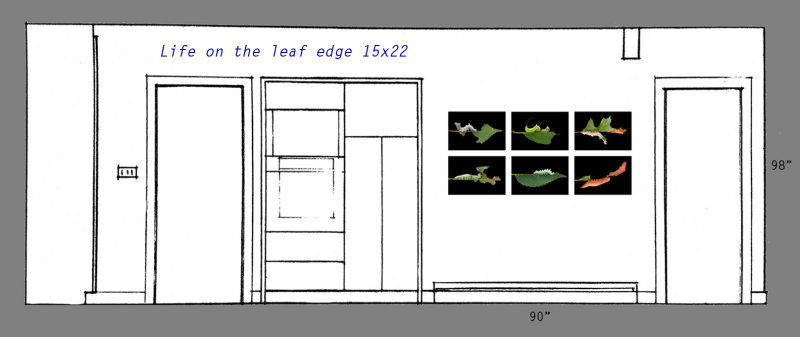 Life on the Leaf Edge series at 15x22