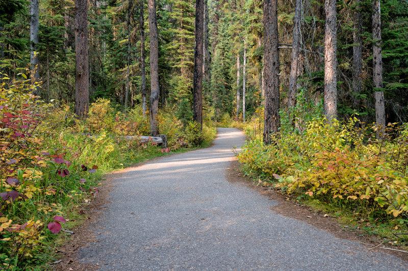 Emeral Lake Trail