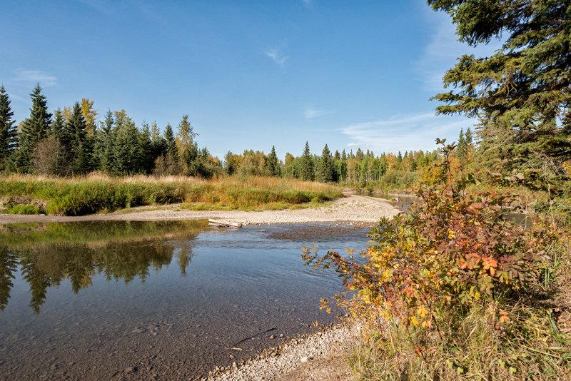 Mid September On The Little Red Deer River
