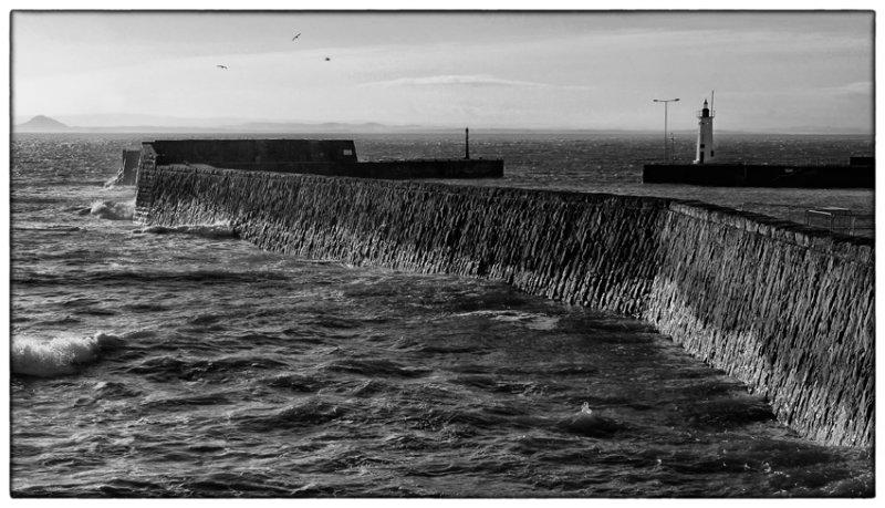 Anstruther Harbour - DSC_4284.jpg