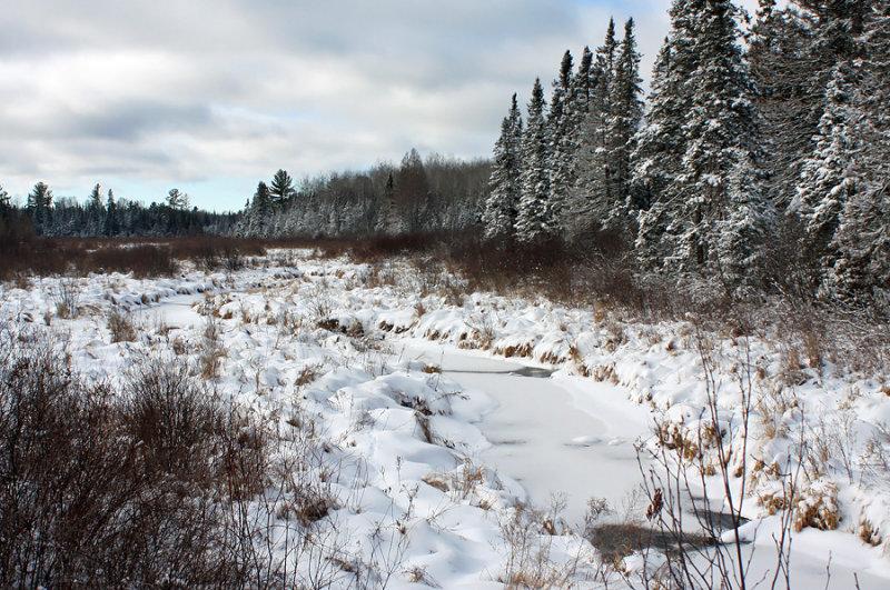 Northwoods Winter 3614