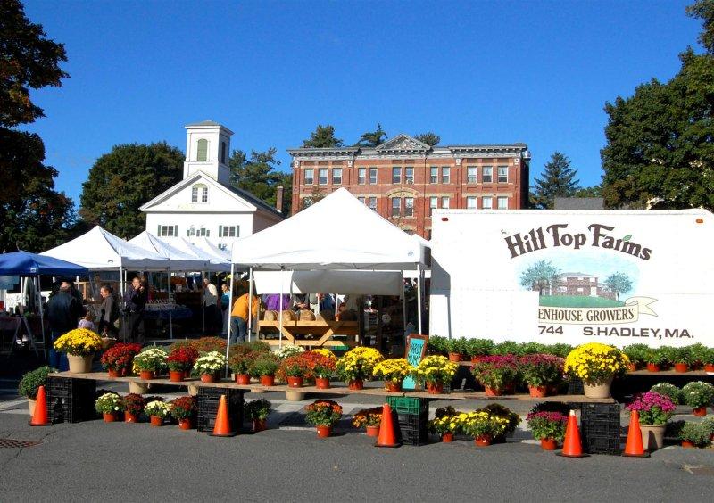 280 251 Amherst Farmers Market.jpg