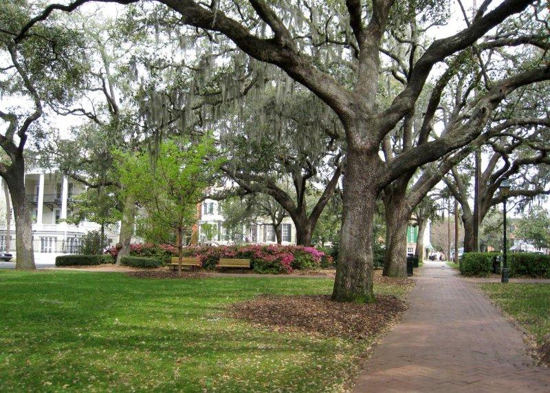 500 Savannah 163 Calhoun Square.jpg