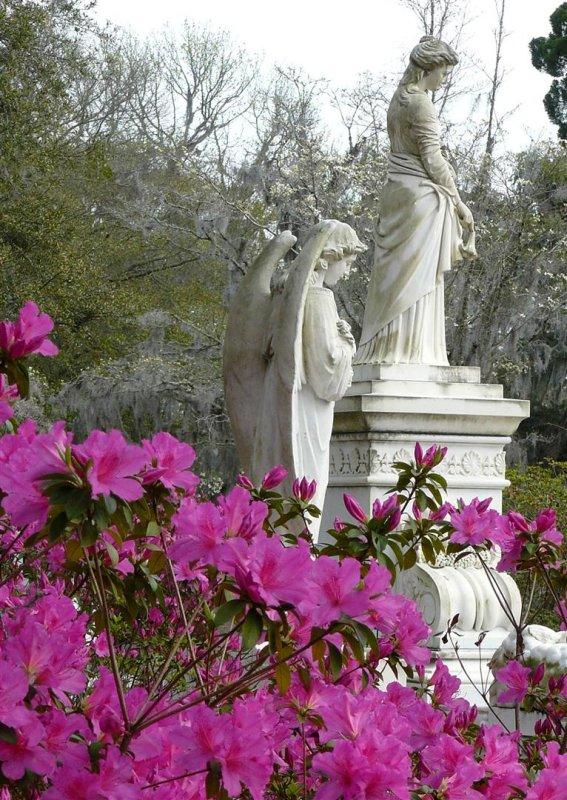 500 Savannah 441  Bonaventure Cemetery.jpg