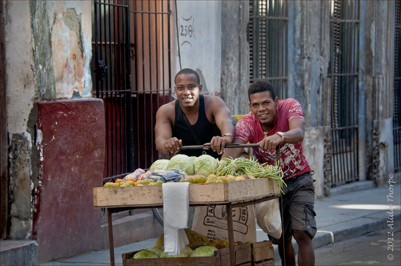 vegetable cart guys