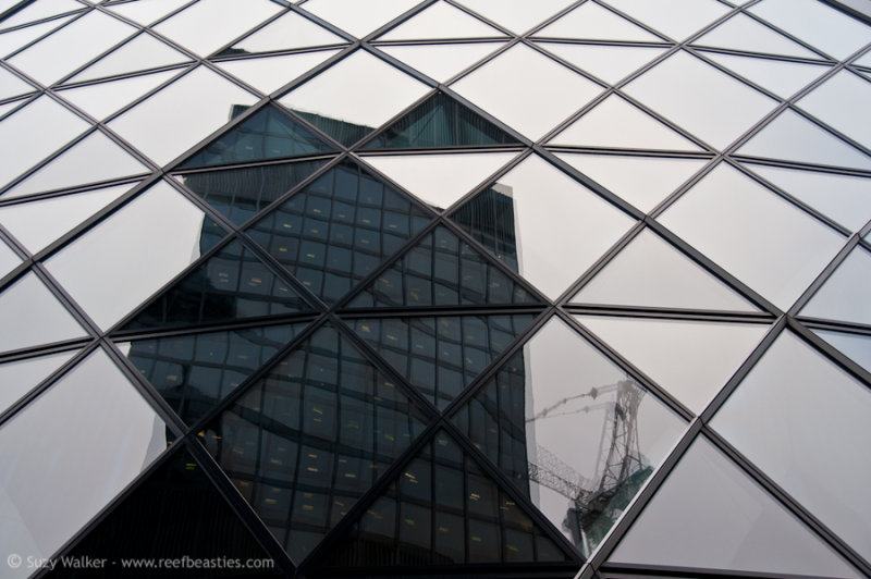 London Abstracts 6